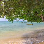 beachfront mini
